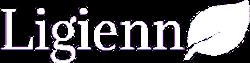 lakásbiztosítás footer logo